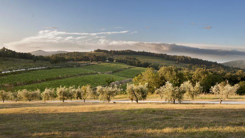 Tenuta Sette Cieli - Toscana